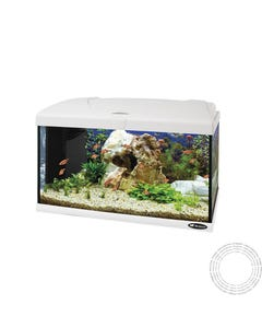 Aquario Vidro Capri 60 Led White - 60l