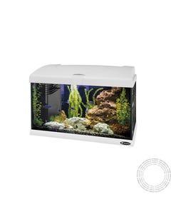 Aquario Vidro Capri 50 Led White - 40l